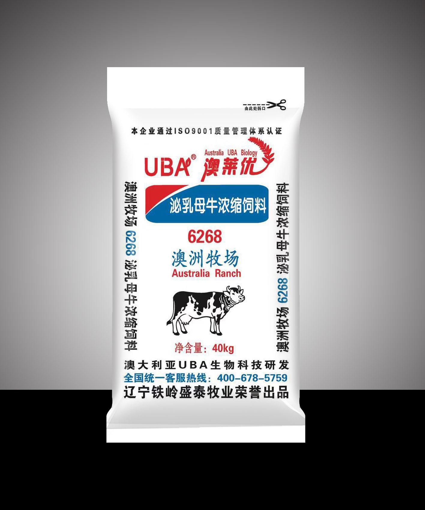 泌乳母牛12bet手机版12博客户端6268