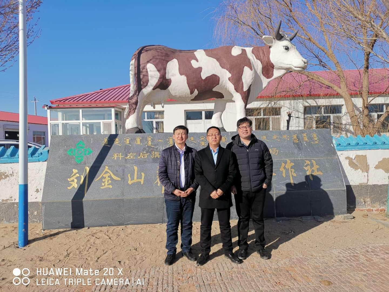 刘金山养牛专业合作社